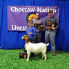 Ceejay Robison of Checota 4-H wins Meat Goat Reserve Grand Champion, Junior Showman Champion and Division 2 Champion